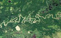 Satellite image of the Amazon floodplain
